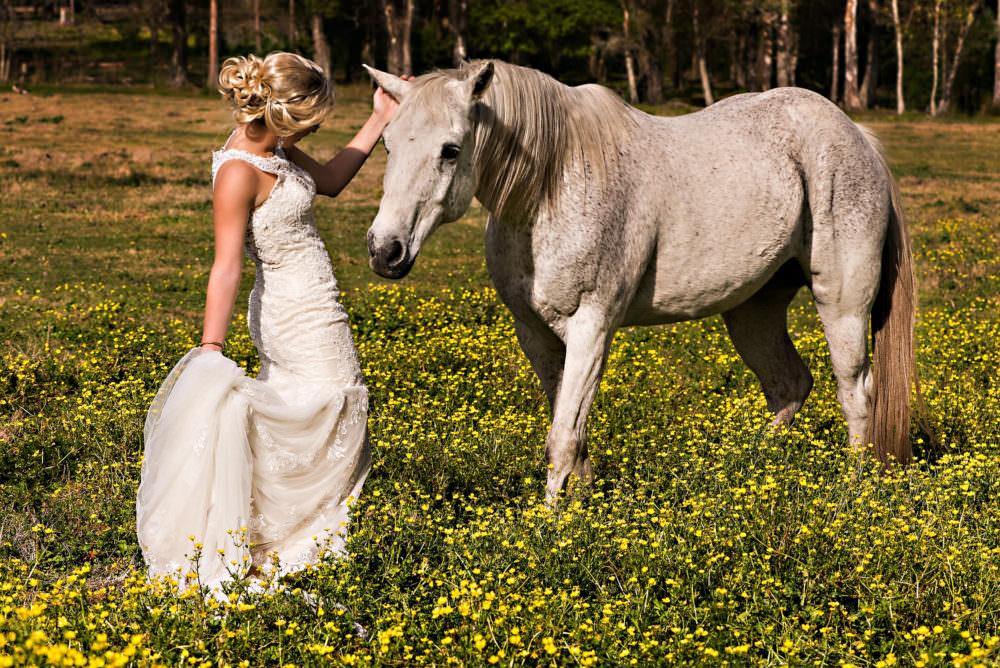 Lindsay-Royce-67-Diamond-D-Ranch-Jacksonville-Wedding-Photographer-Stout-Photography