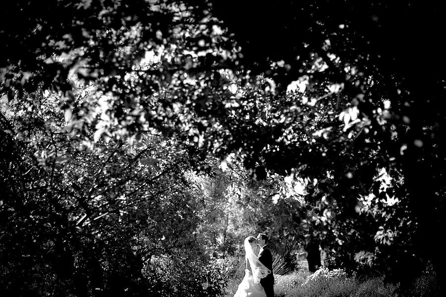 hillary-mike-013-uc-davis-arboretum-sacramento-wedding-photographer-stout-photography