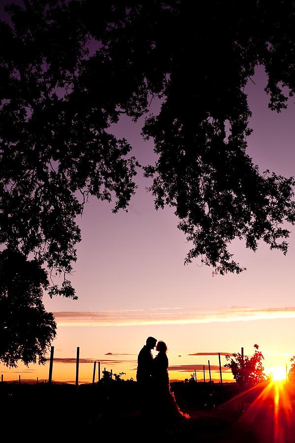 dani-mike-025-wilsons-vineyard-sacramento-wedding-photographer-stout-photography
