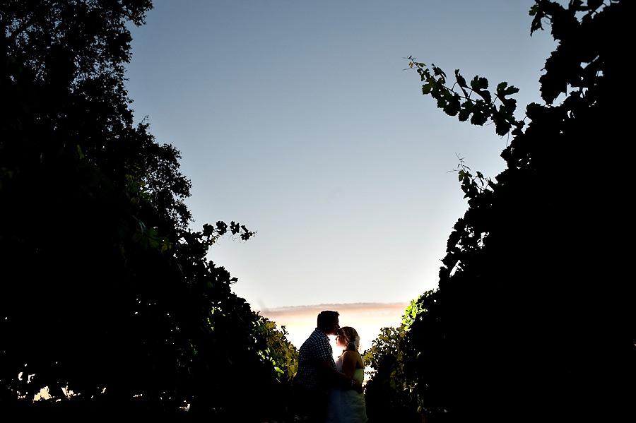 dani-mike-026-wilsons-vineyard-sacramento-wedding-photographer-stout-photography