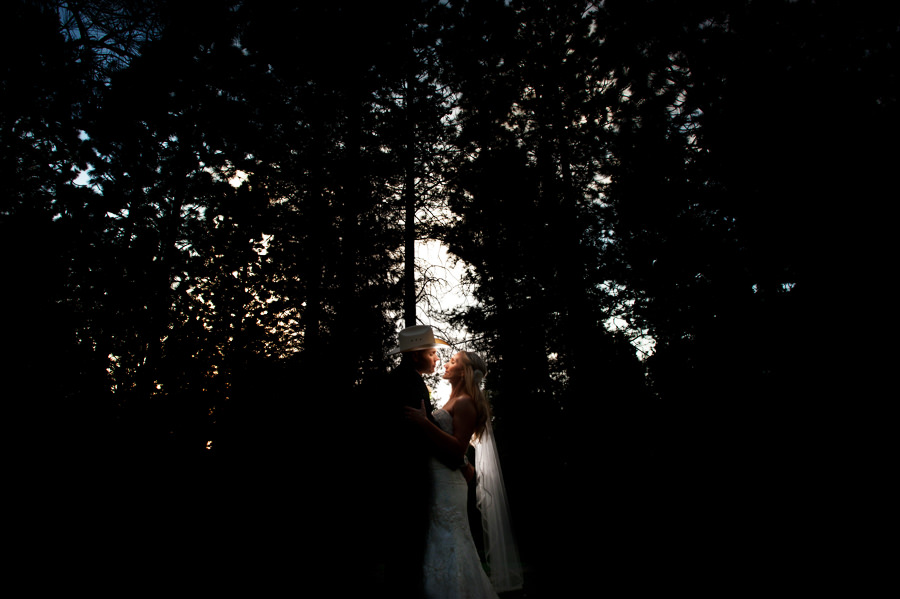 christine-steve-022-forest-house-lodge-foresthill-wedding-photographer-stout-photography