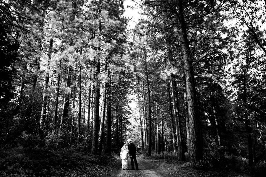 christine-steve-023-forest-house-lodge-foresthill-wedding-photographer-stout-photography