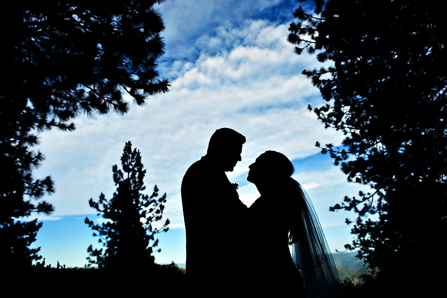 tammie-mike-026-forest-house-lodge-foresthill-wedding-photographer-stout-photography