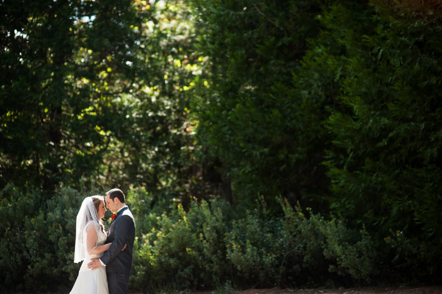 gina-zac-024-forest-house-lodge-foresthill-wedding-photographer-stout-photography
