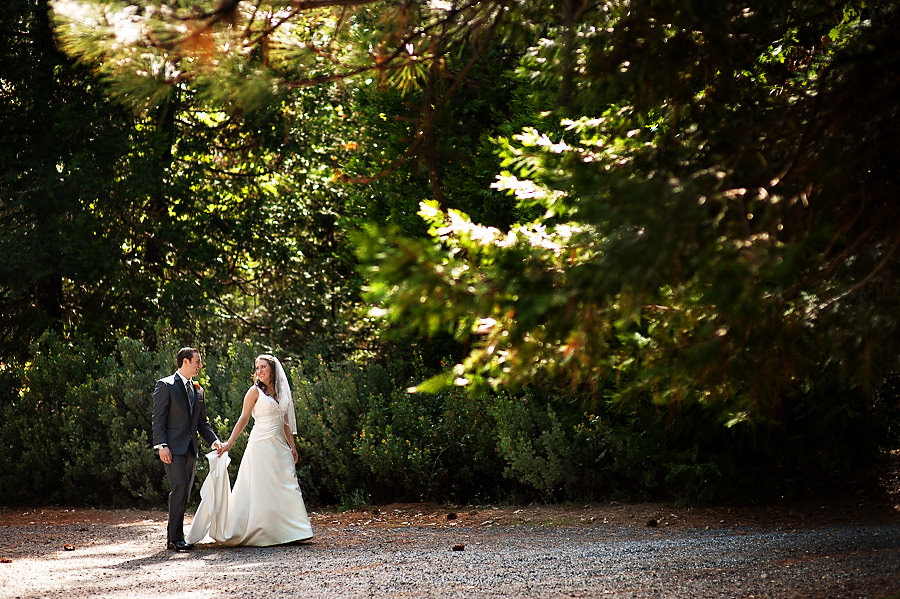 gina-zac-036-forest-house-lodge-foresthill-wedding-photographer-stout-photography