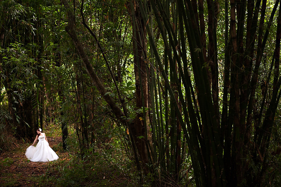 cat-mike-021-arenal-costa-rica-wedding-photographer-stout-photography