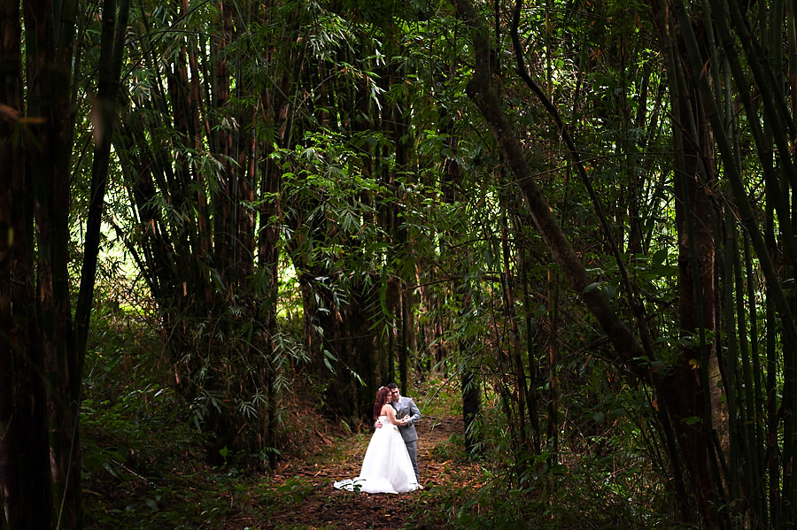 cat-mike-022-arenal-costa-rica-wedding-photographer-stout-photography