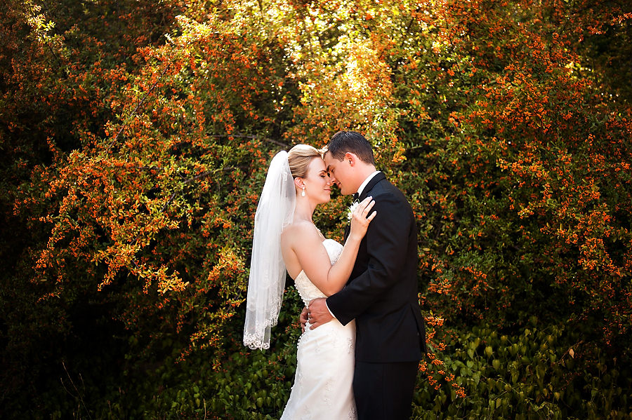 nicole-brent-019-monte-verde-inn-foresthill-wedding-photographer-stout-photography