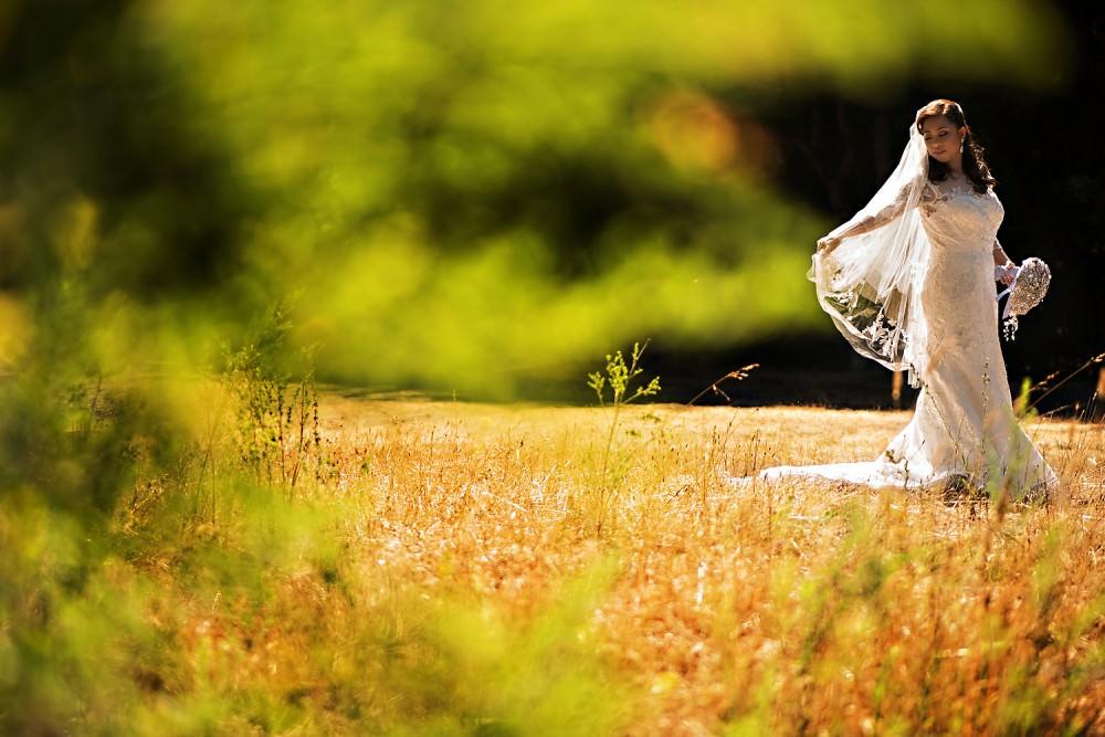 Sharon-Alan-10-Mountain-Terrace-Woodside-California-Wedding-Photographer-Stout-Photography