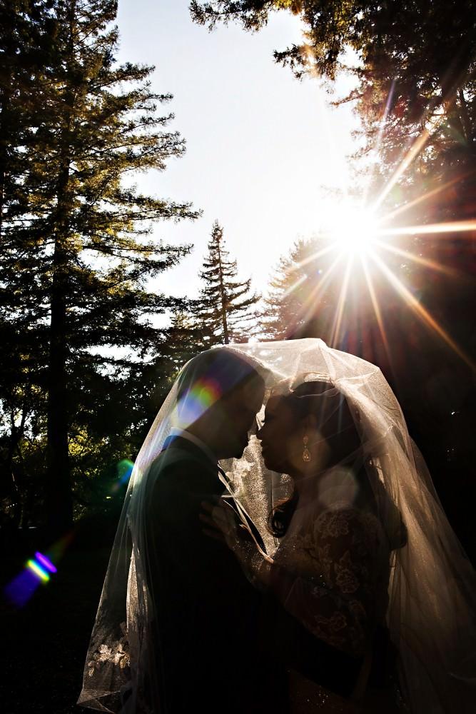 Sharon-Alan-25-Mountain-Terrace-Woodside-California-Wedding-Photographer-Stout-Photography