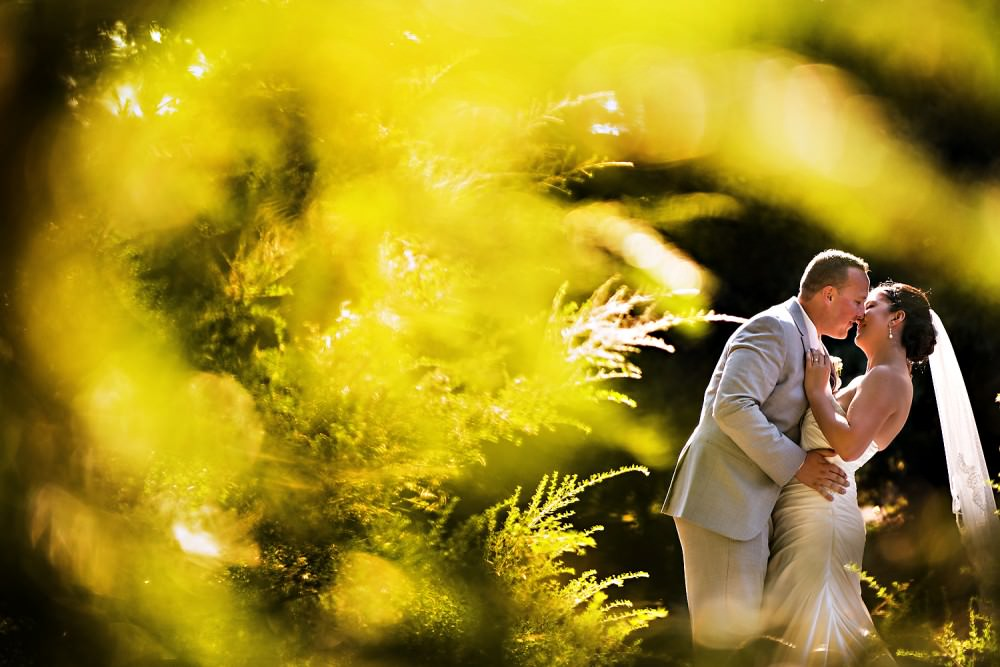 Elise-Sean-26-Mountain-Terrace-Redwood-City-Wedding-Photographer-Stout-Photography