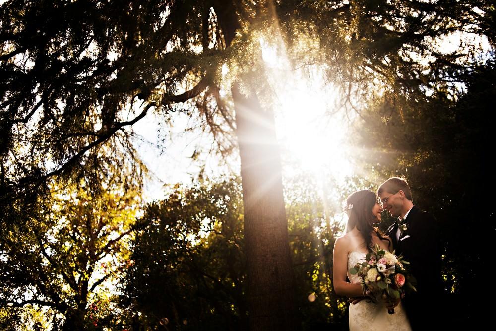 Emily-Mike-21-Park-Winters-Sacramento-Wedding-Photographer-Stout-Photography