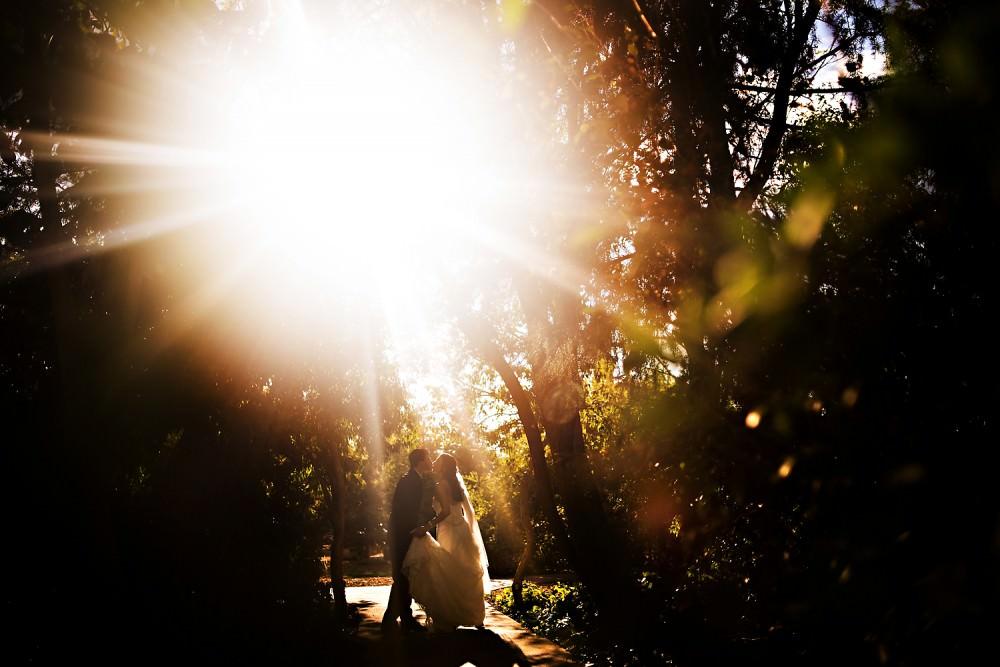 Emily-Mike-26-Park-Winters-Sacramento-Wedding-Photographer-Stout-Photography