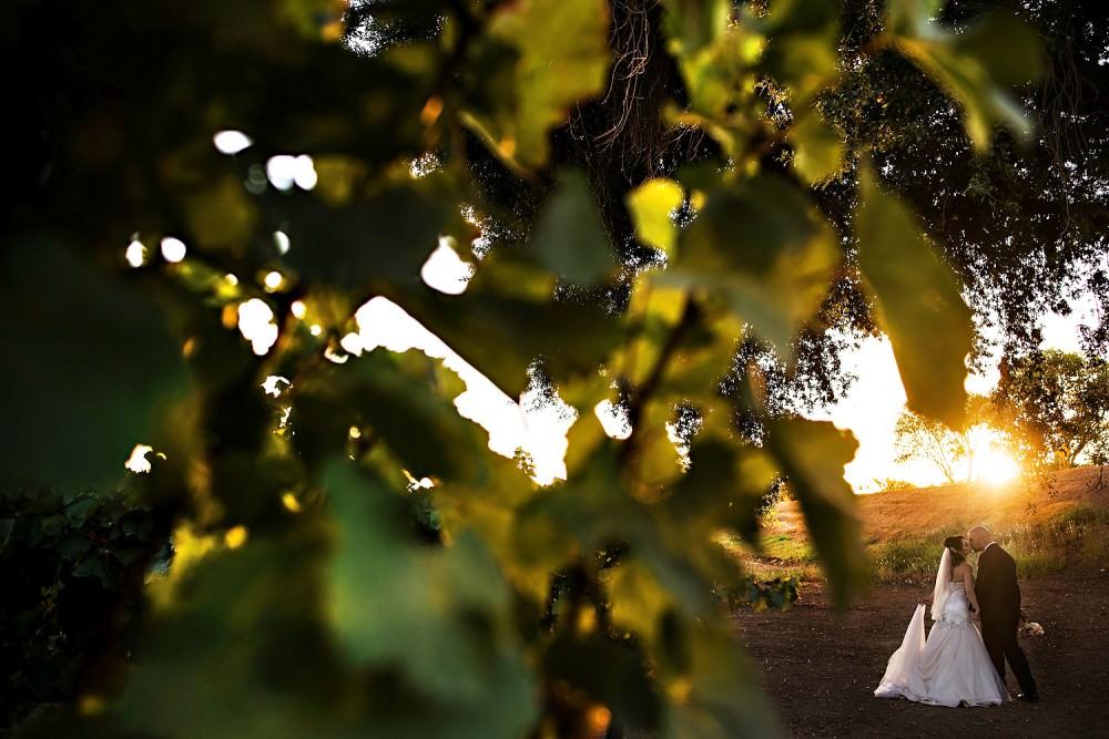 Gabby-Dave-34-Scribner-Bend-Sacramento-Wedding-Photographer-Stout-Photography