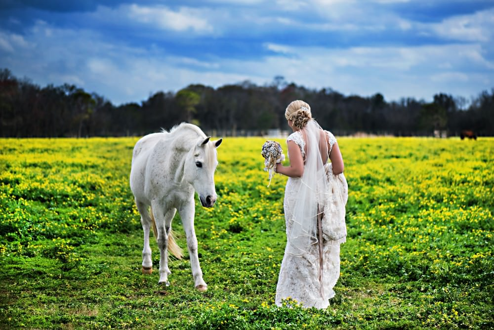 K'Leigh-Dusty-41-Diamond-D-Ranch-Jacksonville-Wedding-Photographer-Stout-Photography