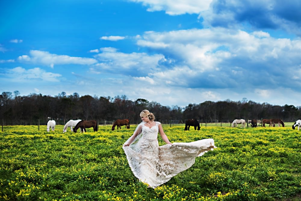 K'Leigh-Dusty-72-Diamond-D-Ranch-Jacksonville-Wedding-Photographer-Stout-Photography