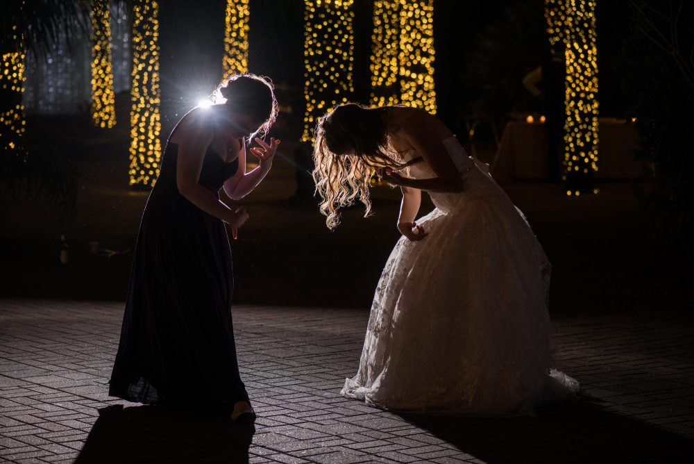 Mindy-Mike-104-Jacksonville-Zoo-And-Gardens-Wedding-Photographer-Stout-Photography