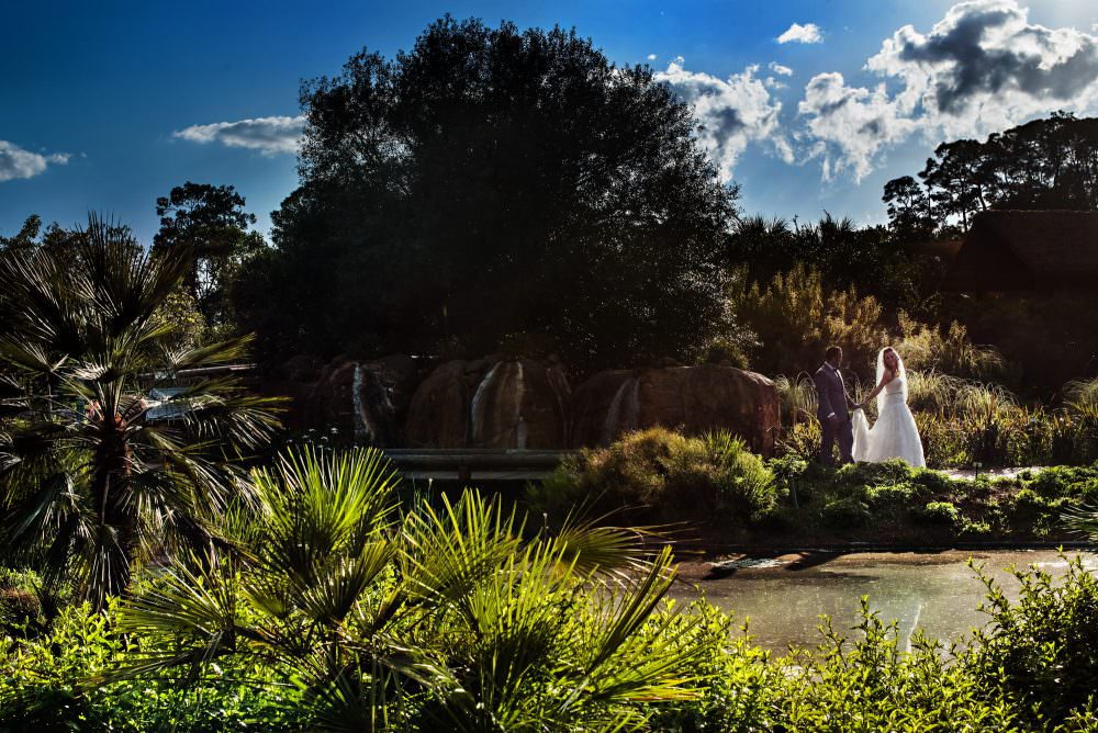 Mindy-Mike-44-Jacksonville-Zoo-And-Gardens-Wedding-Photographer-Stout-Photography