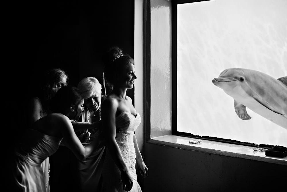 Sephora-Michael-14-Marineland-Jacksonville-Wedding-Photographer-Stout-Photography