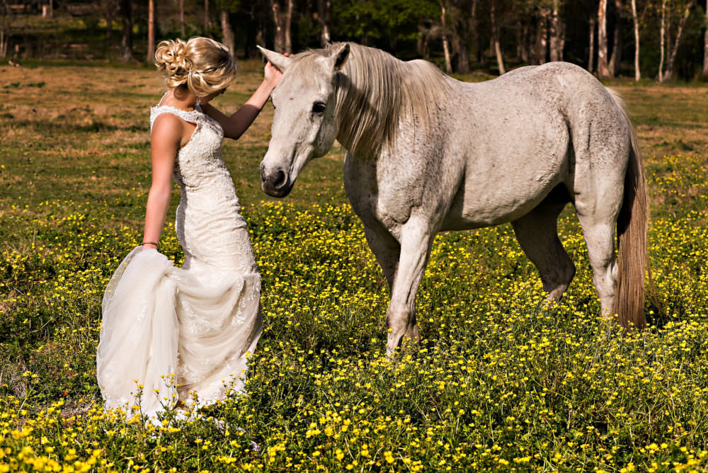 Lindsay-Royce-67-Diamond-D-Ranch-Jacksonville-Wedding-Photographer-Stout-Photography