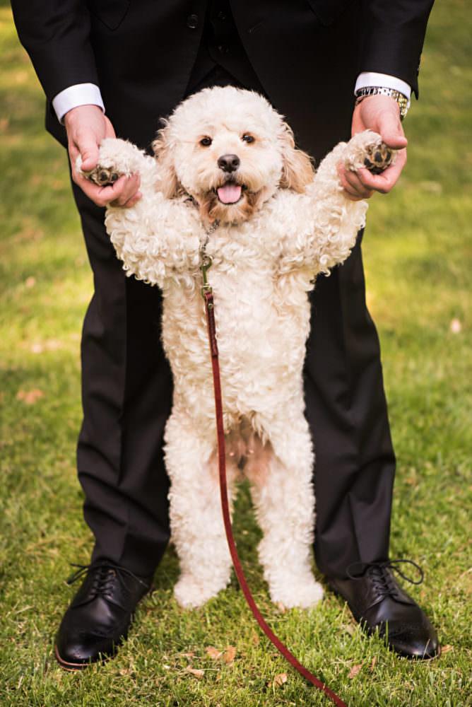 Angelina-Anthony-65-Mountain-Terrace-Sacramento-Wedding-Photographer-Stout-Photography