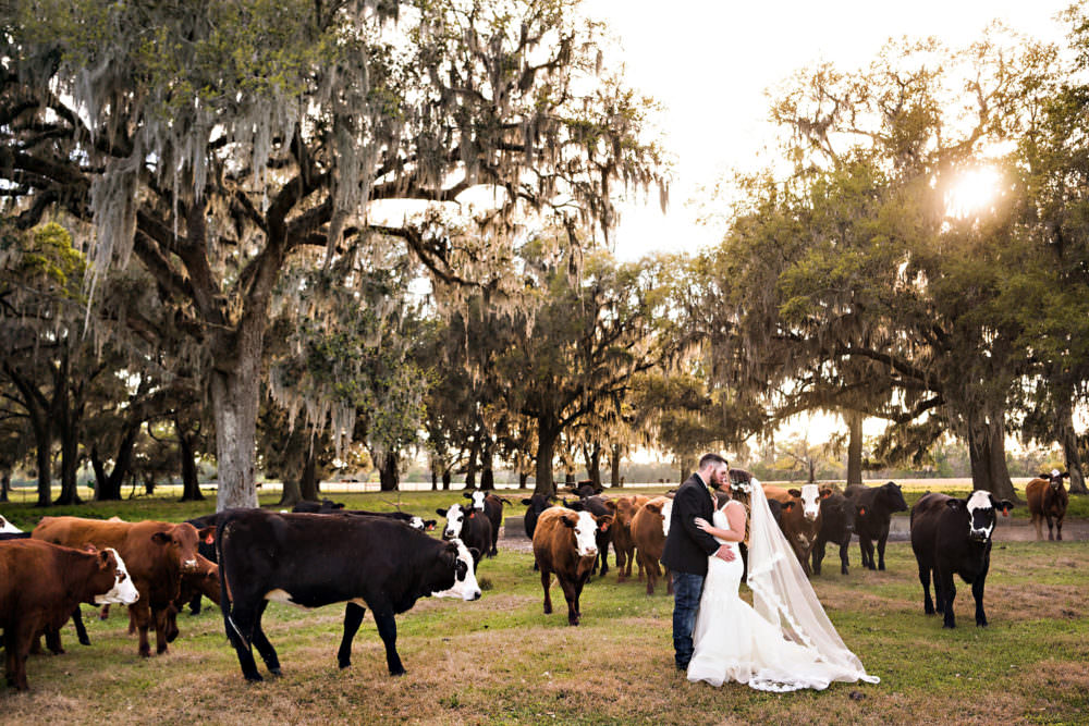 Caitlin-Kevin-89-Santa-Fe-River-Ranch-Florida-Wedding-Photographer-Stout-Studios