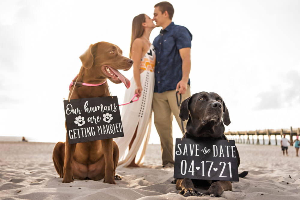 Natalie-Ryan-19-Jacksonville-Engagement-Wedding-Photographer-Stout-Studios
