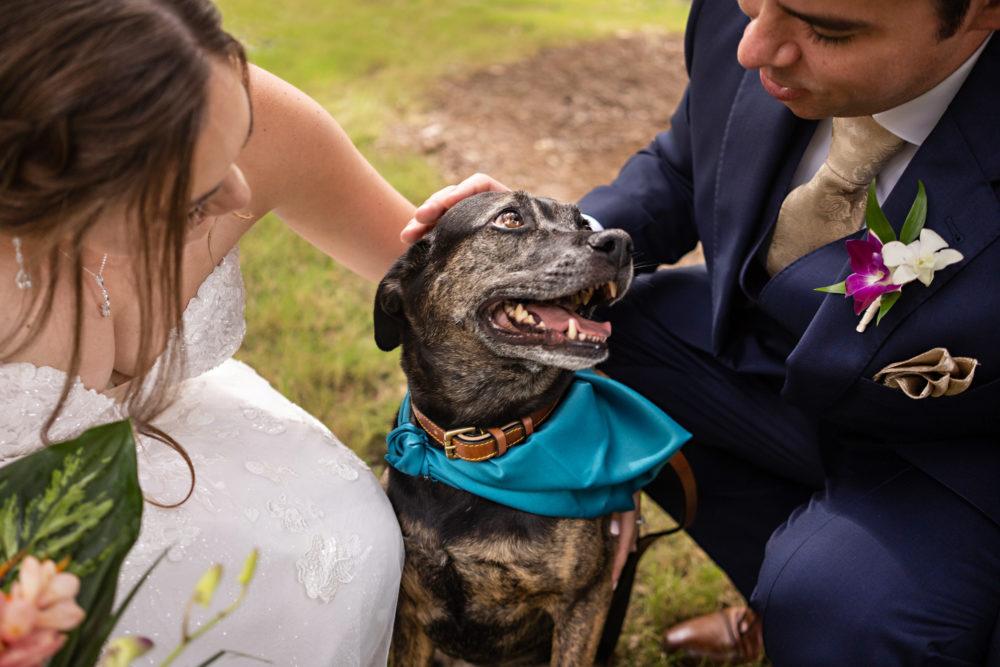 Emily-Devon-6-Treasury-on-the-Plaza-St-Augustine-Wedding-Engagement-Photographer-Stout-Studios